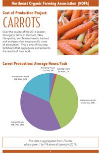Carrots-COP-factsheet-MA-1