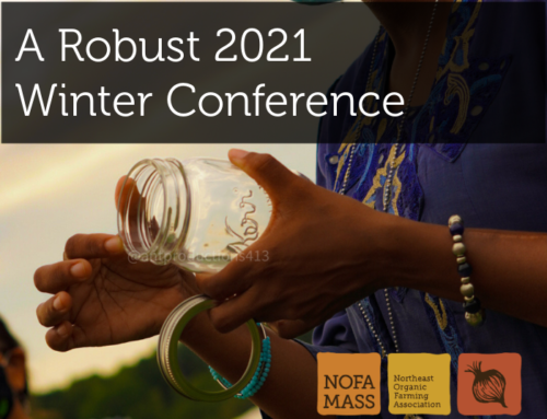 Diverse Workshops Signal a Robust 2021 Winter Conference