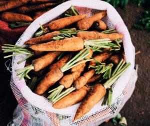 bag of carrots