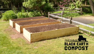 Raised Bed Gardens with Black Earth Compost