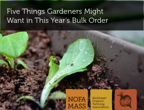 Five Things Gardeners Might Want in This Year's Bulk Order
