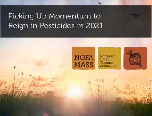 Picking Up Momentum to Reign in Pesticides in 2021