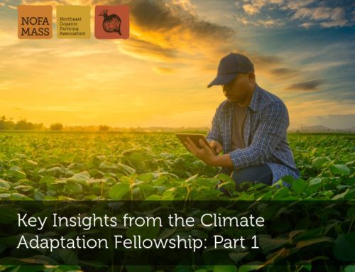 Key Insights from the Climate Adaptation Fellowship: Part 1