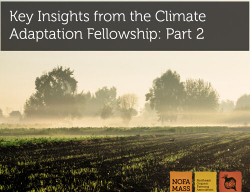 Key Insights from the Climate Adaptation Fellowship: Part 2