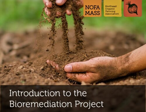 Introduction to the NOFA/Mass Bioremediation Project