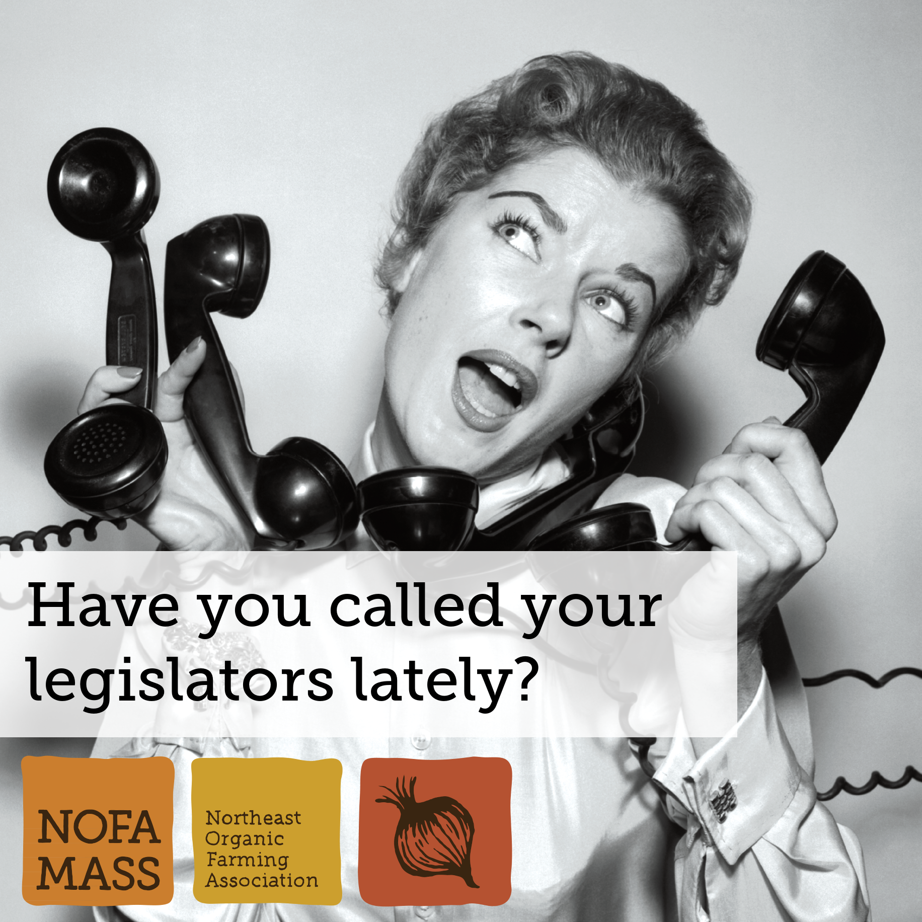 Call your legislators!