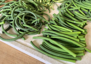 Garlic scape sections sorted with curled on the left and straight on the right