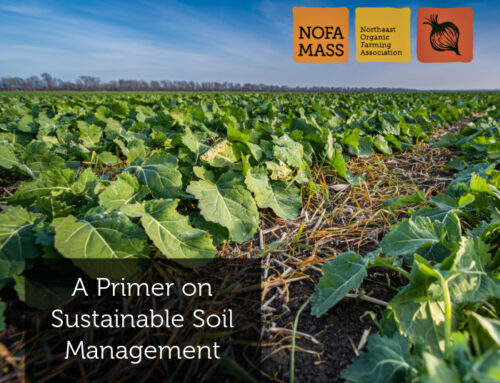 A Primer on Sustainable Soil Management
