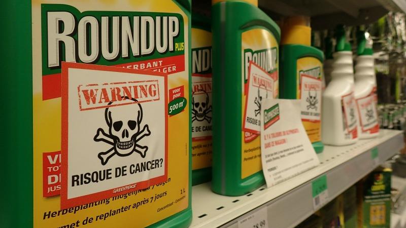 roundup - cancer risk?
