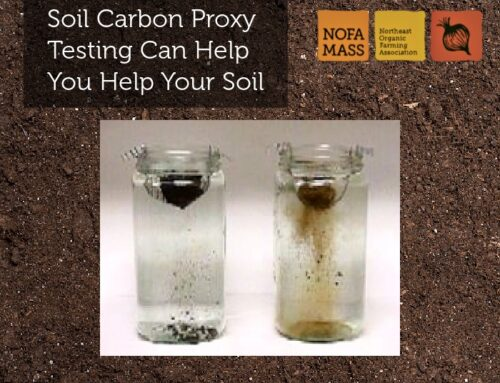 Soil Carbon Proxy Testing Can Help You Help Your Soil