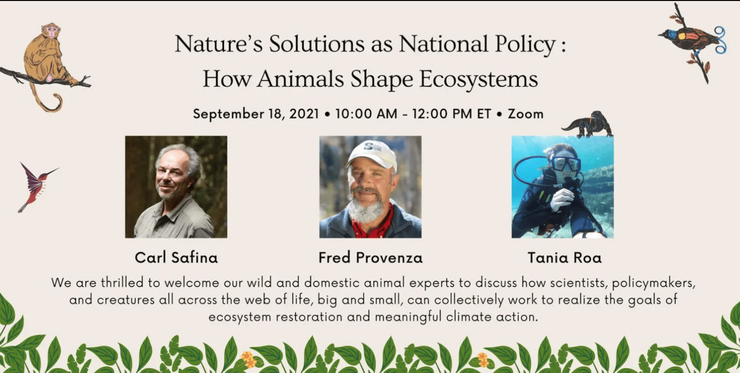 Nature's Solutions as National Policy