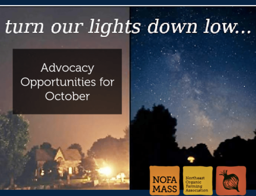 Advocacy Opportunities for October